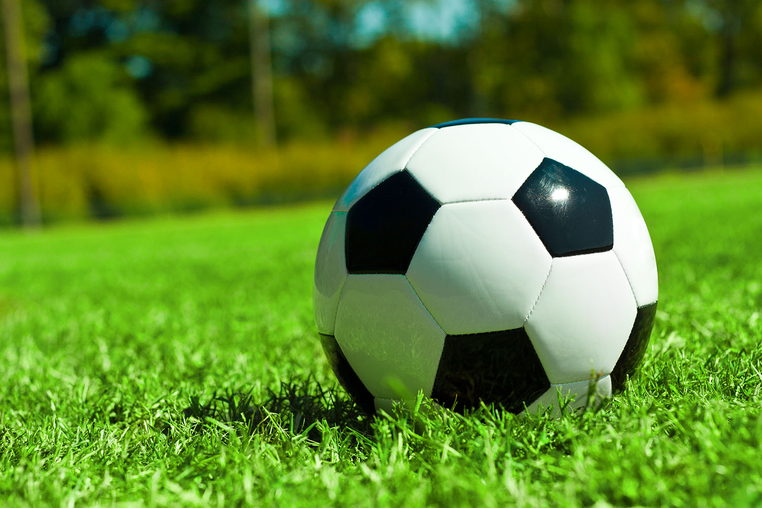 SAVE THE DATE   Soccer camp  Soccer